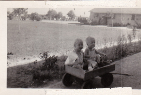 Two toddlers in a wagon (ddr-densho-315-23)