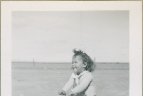 A toddler riding a tricycle (ddr-densho-300-80)