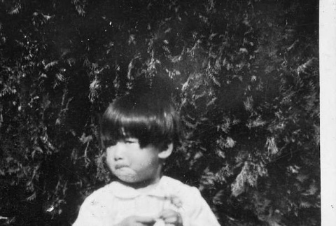 [Girl in front of foliage] (ddr-csujad-56-288)