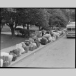 Baggage of Japanese Americans lining the street (ddr-densho-151-164)