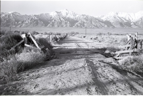 View of the Sierra Nevadas from the former camp site (ddr-manz-3-43)
