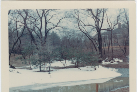 Area to be redesigned at the Brooklyn Botanic Garden (ddr-densho-377-25)