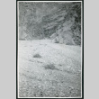 Photograph of Titus Canyon in Death Valley (ddr-csujad-47-142)