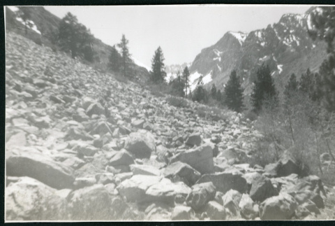 Photograph of a rock field in the mountains near Manzanar (ddr-csujad-47-309)
