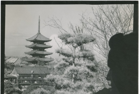View of trees and a tower in Nara (ddr-densho-299-211)