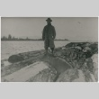 A man stands on logs being floated to the sawmill (ddr-densho-353-156)