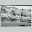 Photograph of L. Josephine Hawes standing on a diving board on New Year's Day in Death Valley (ddr-csujad-47-118)