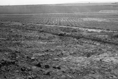 View of agricultural fields (ddr-fom-1-785)