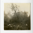 Incarcerees at the Jerome camp, cutting trees (ddr-csujad-38-279)