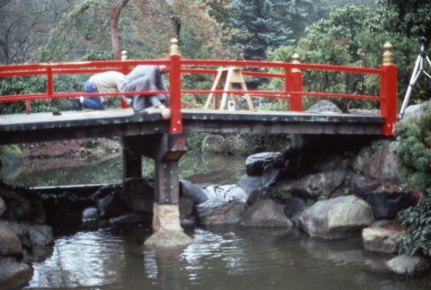 Working on the Heart Bridge at Adopt a Park (ddr-densho-354-1010)