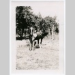 Woman and horse (ddr-densho-313-26)