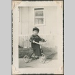 Toddler riding a tricycle (ddr-densho-321-238)