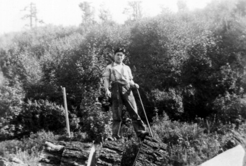 Issei clearing land (ddr-densho-46-3)