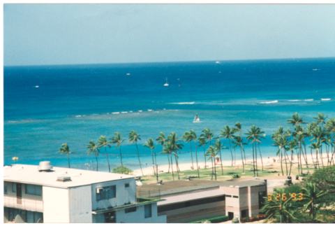 View of ocean and palm trees (ddr-densho-368-306)