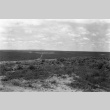 View of agricultural fields (ddr-fom-1-4)