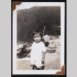 Toddler stands on a rocky pathway (ddr-densho-404-93)