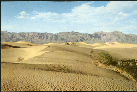 Photograph of Mesquite Flat Sand Dunes in Death Valley (ddr-csujad-47-149)
